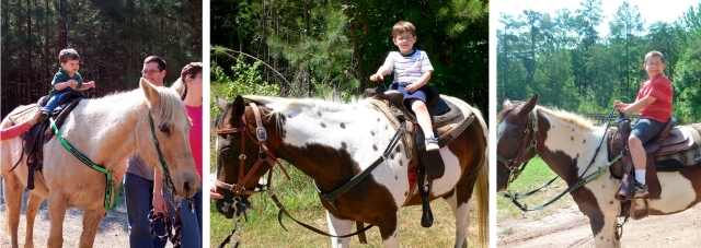THomas on the horse