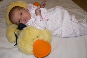 Duck - 1 week